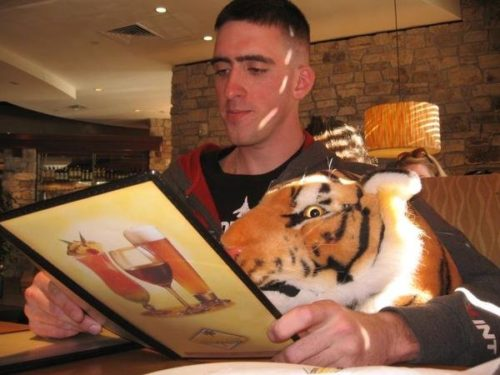 Jeremy ordering dinner with a stuffed tiger